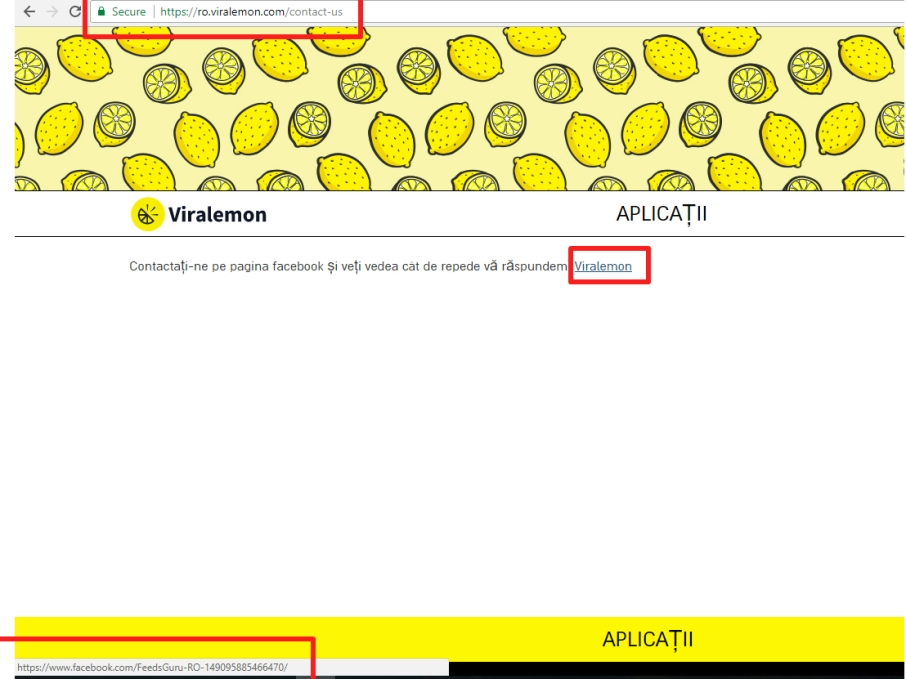 viralemon contact.jpg